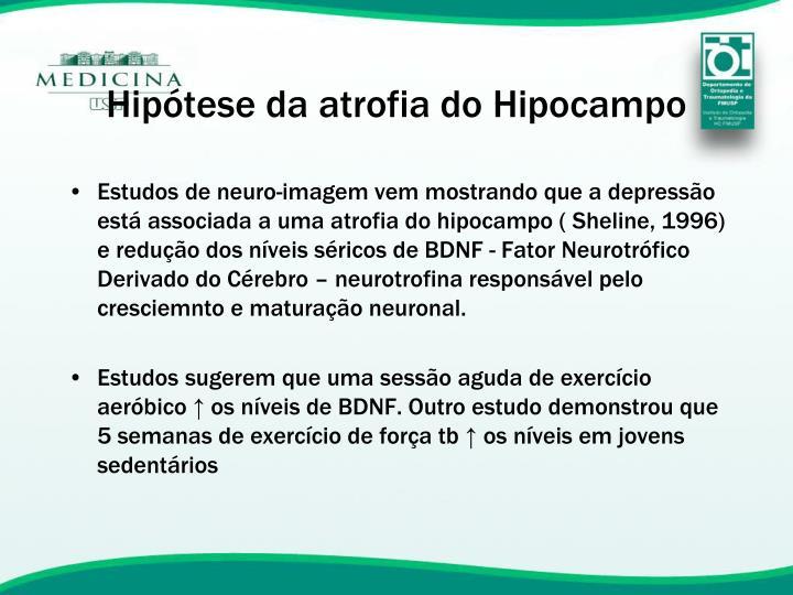 Hipótese da atrofia do Hipocampo