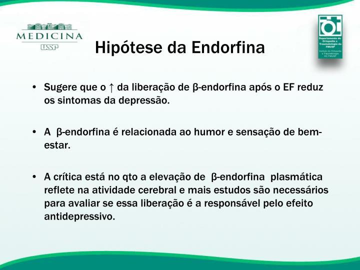 Hipótese da Endorfina