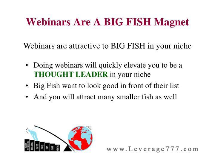 Webinars Are A BIG FISH Magnet