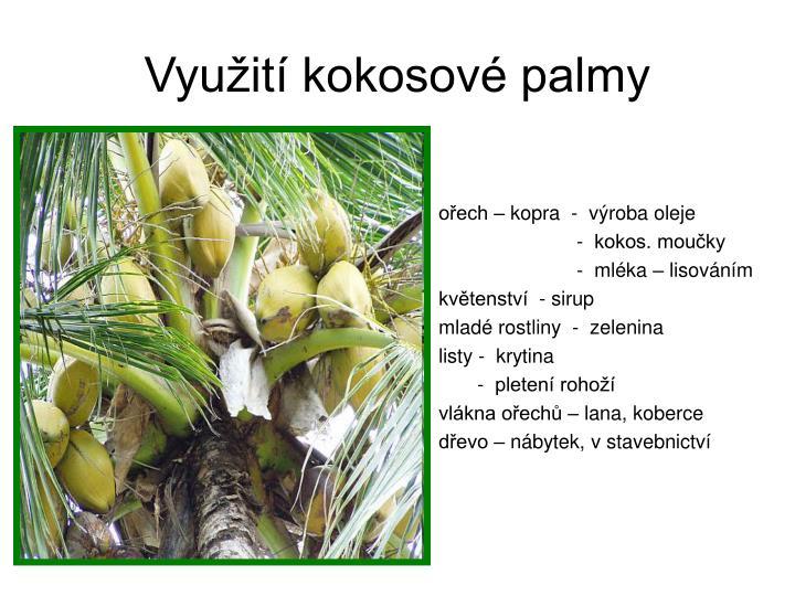 Využití kokosové palmy