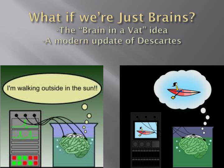 What if we're Just Brains?