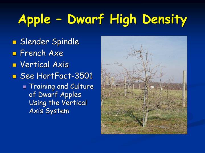 Apple – Dwarf High Density