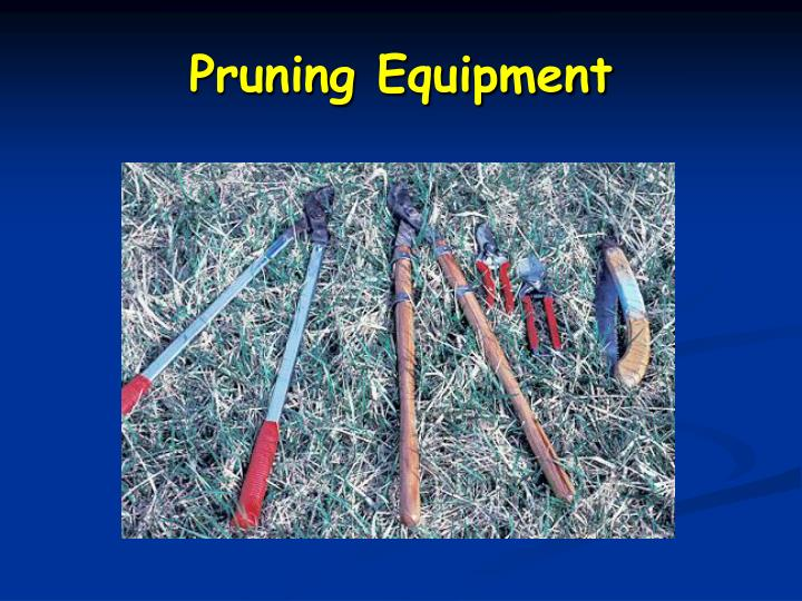 Pruning Equipment
