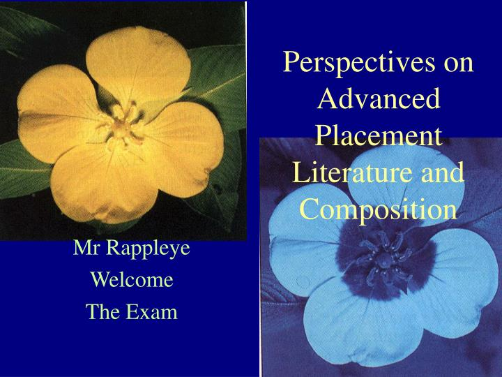 Perspectives on Advanced Placement Literature and Composition
