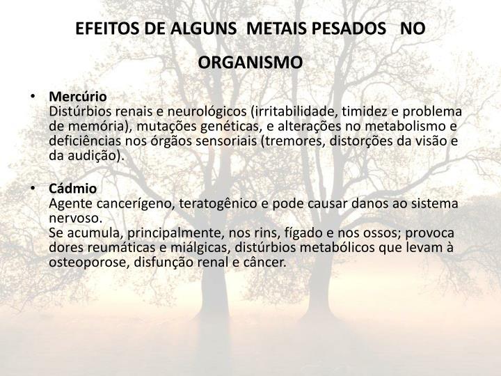 EFEITOS DE ALGUNS  METAIS PESADOS   NO  ORGANISMO