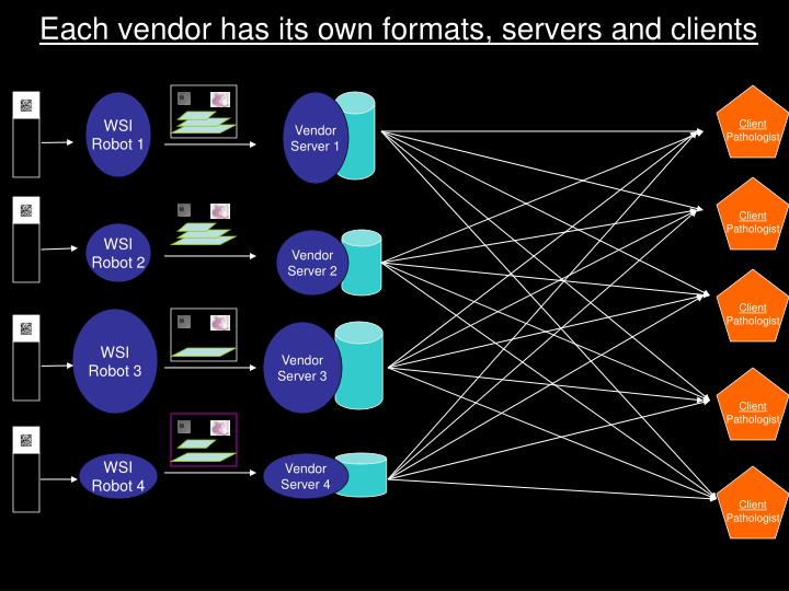 Each vendor has its own formats, servers and clients