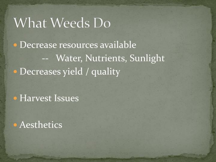 What Weeds Do