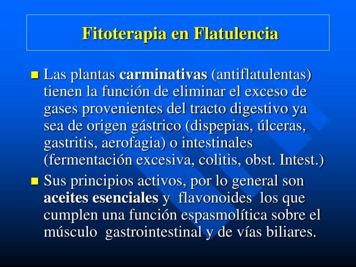 Fitoterapia en Flatulencia