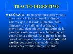 tracto digestivo3