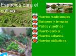 espacios para el cultivo