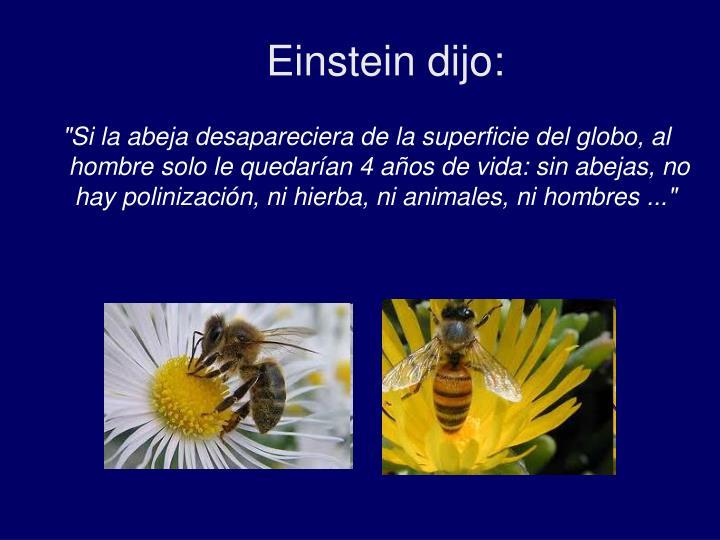Einstein dijo:
