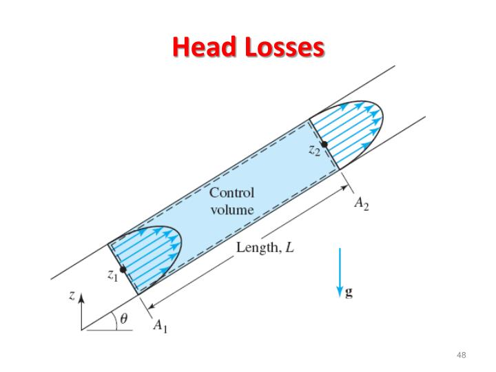 Head Losses