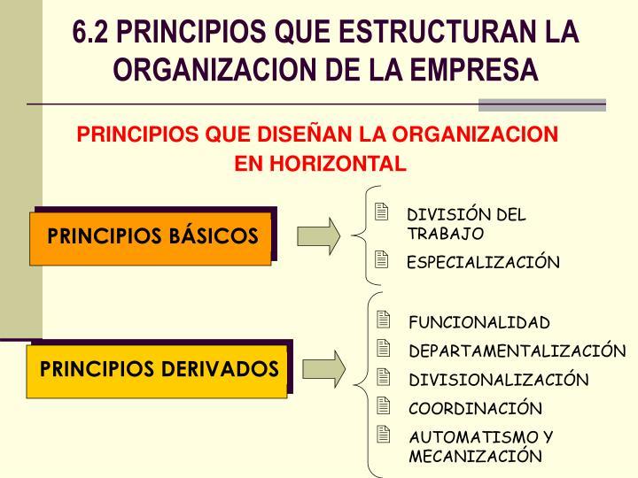 PRINCIPIOS DERIVADOS