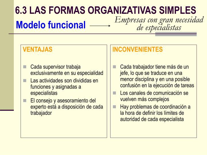 6.3 LAS FORMAS ORGANIZATIVAS SIMPLES