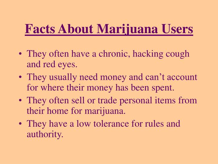 Facts About Marijuana Users