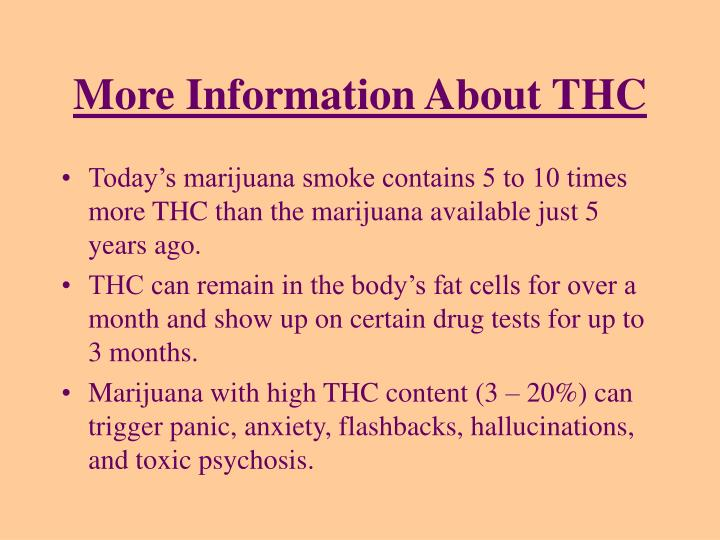 More Information About THC