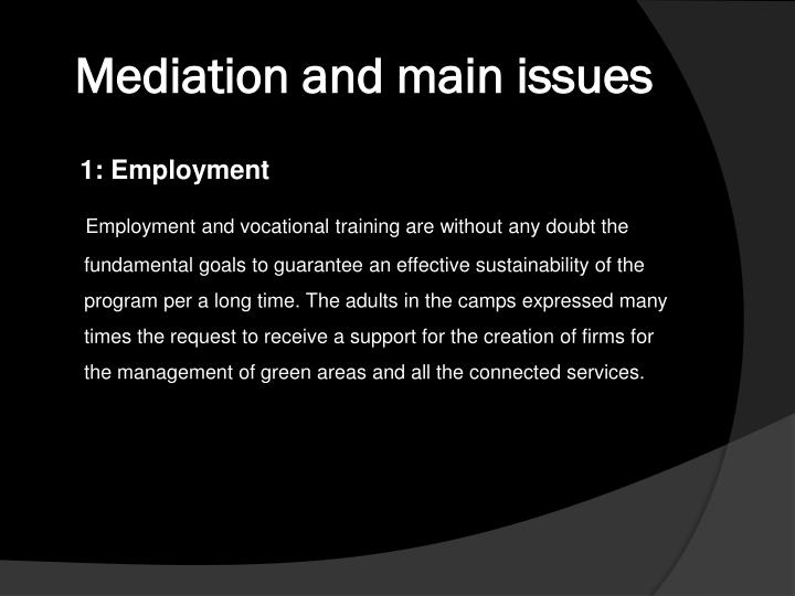 Mediation and main issues