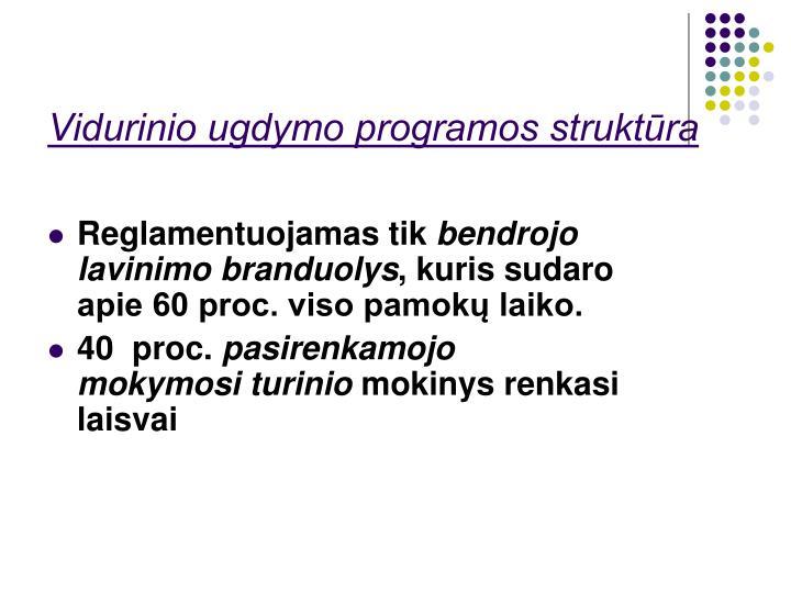 Vidurinio ugdymo programos struktūra
