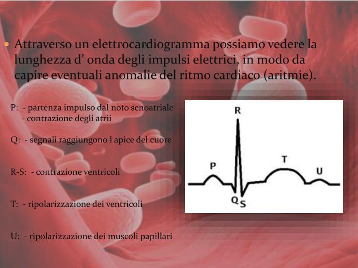 Attraverso un elettrocardiogramma possiamo vedere la lunghezza d' onda degli impulsi elettrici, in modo da capire eventuali anomalie del ritmo cardiaco (aritmie).