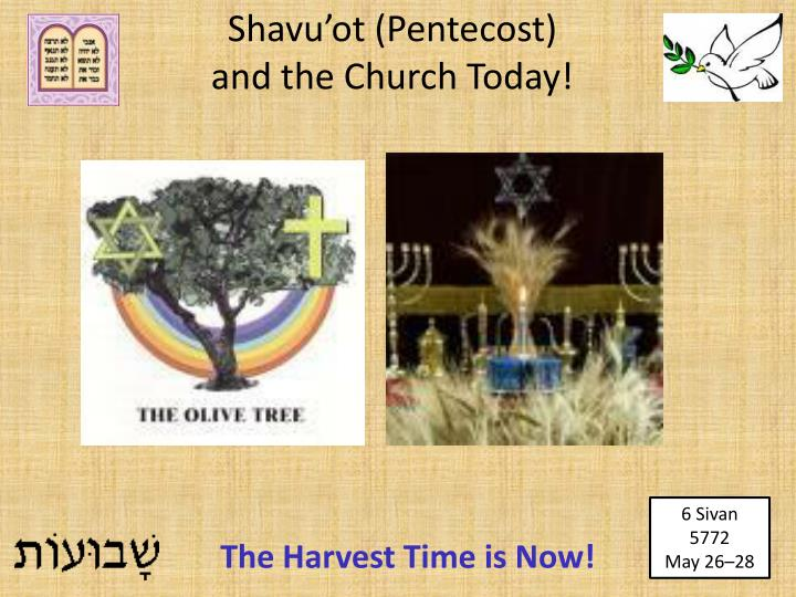 Leviticus 23 15 18 niv feast of weeks pentecost