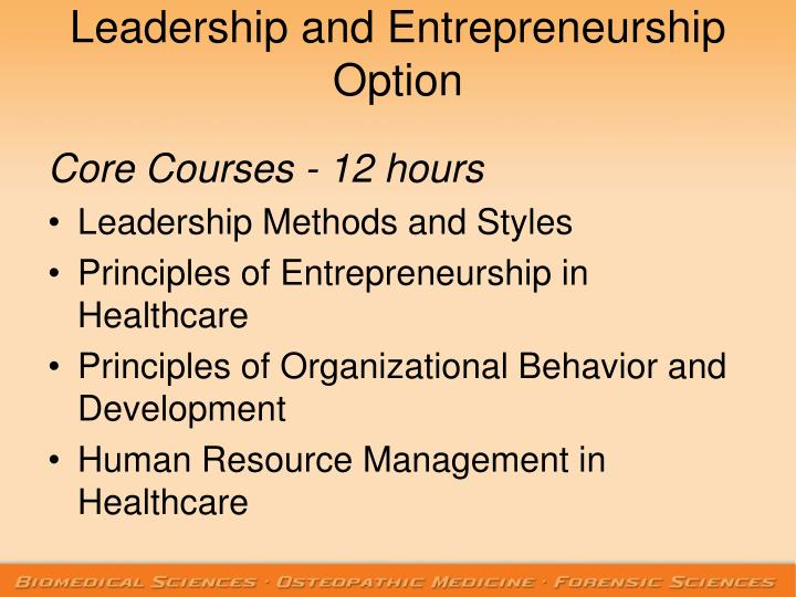 Leadership and Entrepreneurship Option