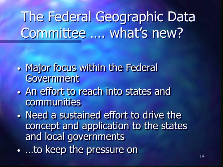 The Federal Geographic Data