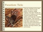 parasitism ticks