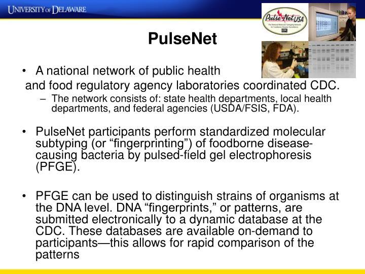 PulseNet