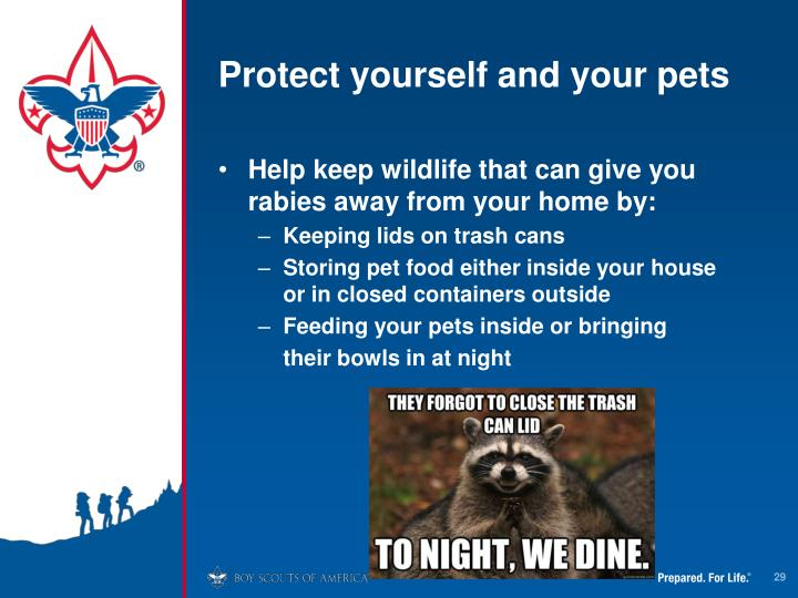 Protect yourself and your pets