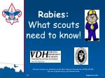 rabies what scouts need to know