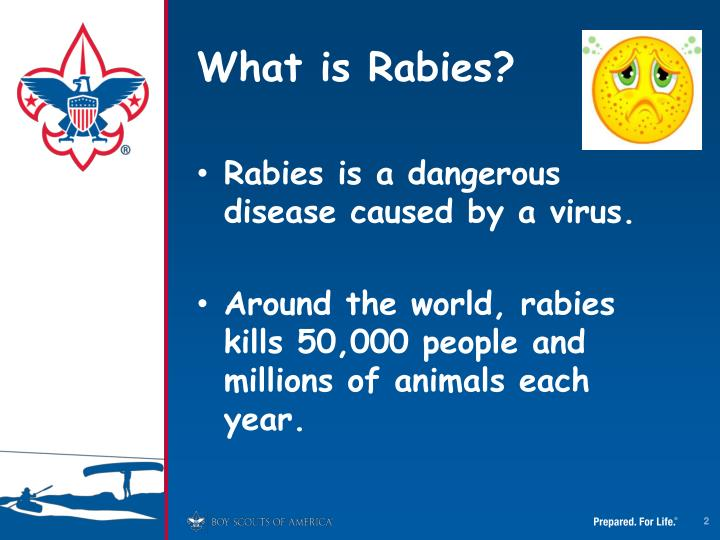 What is rabies