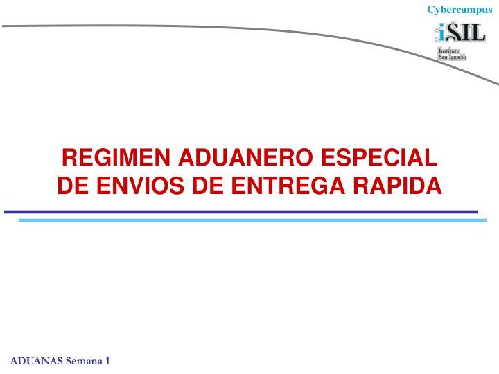 REGIMEN ADUANERO ESPECIAL