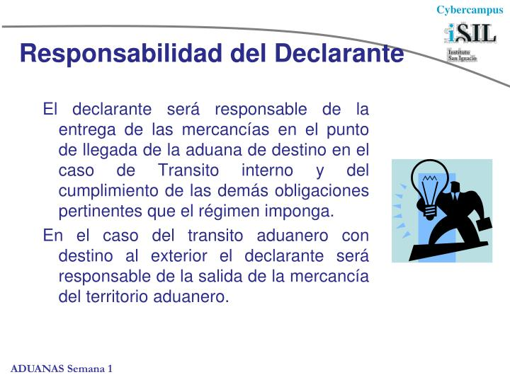 Responsabilidad del Declarante
