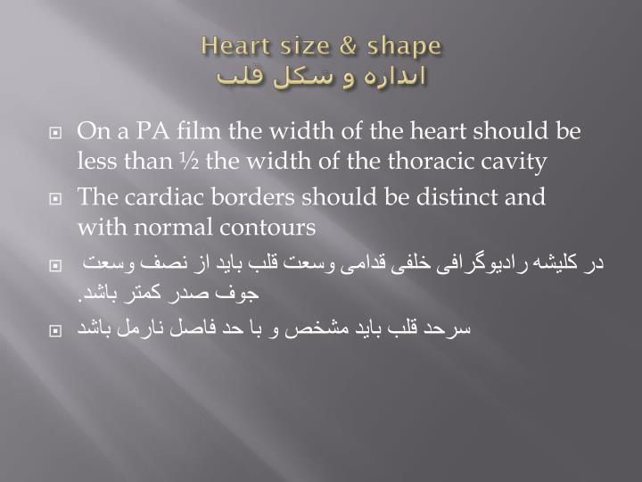 Heart size & shape