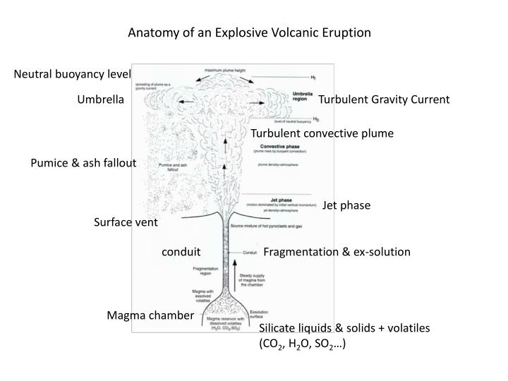 Anatomy of an Explosive Volcanic Eruption