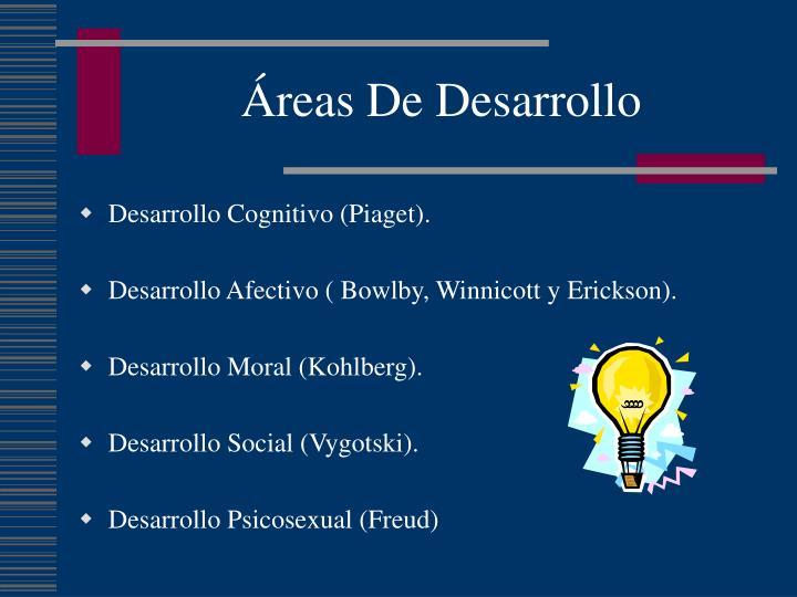 Áreas De Desarrollo