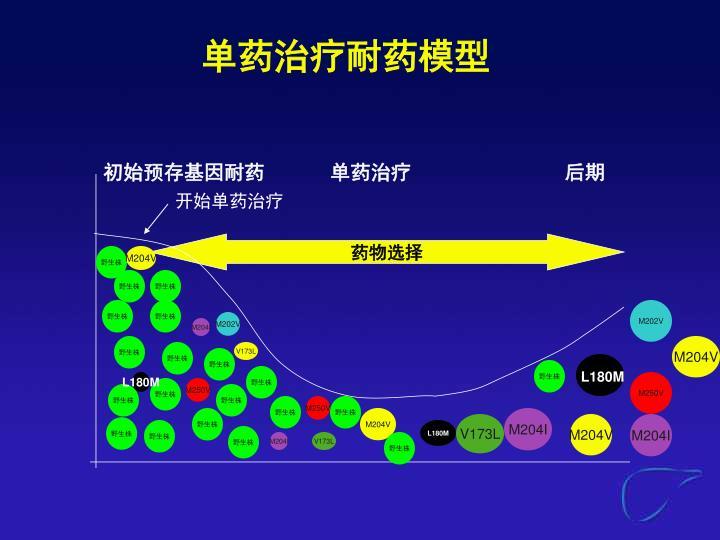 单药治疗耐药模型