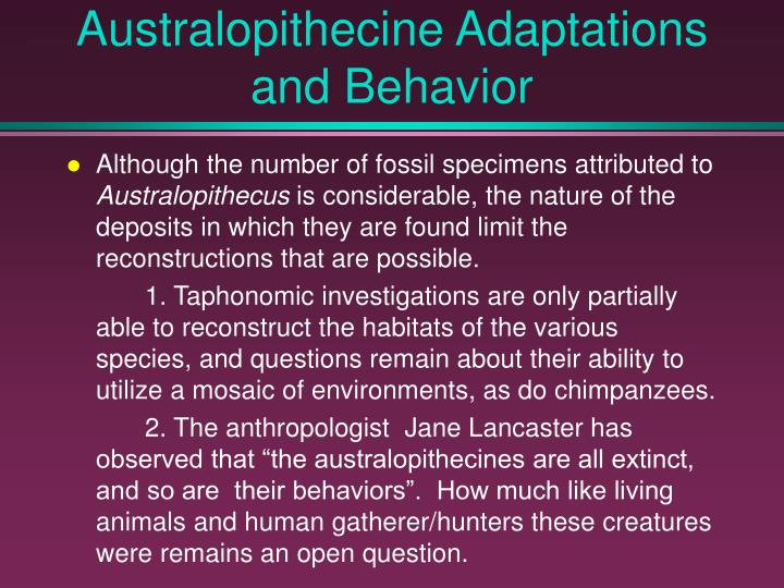 Australopithecine Adaptations and Behavior