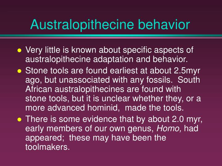 Australopithecine behavior