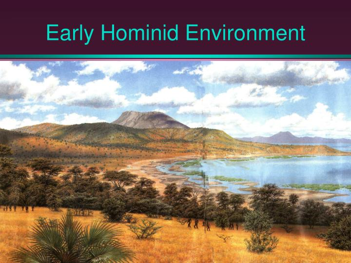 Early Hominid Environment