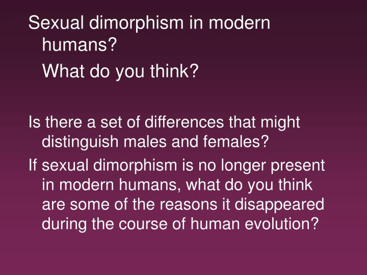 Sexual dimorphism in modern humans?