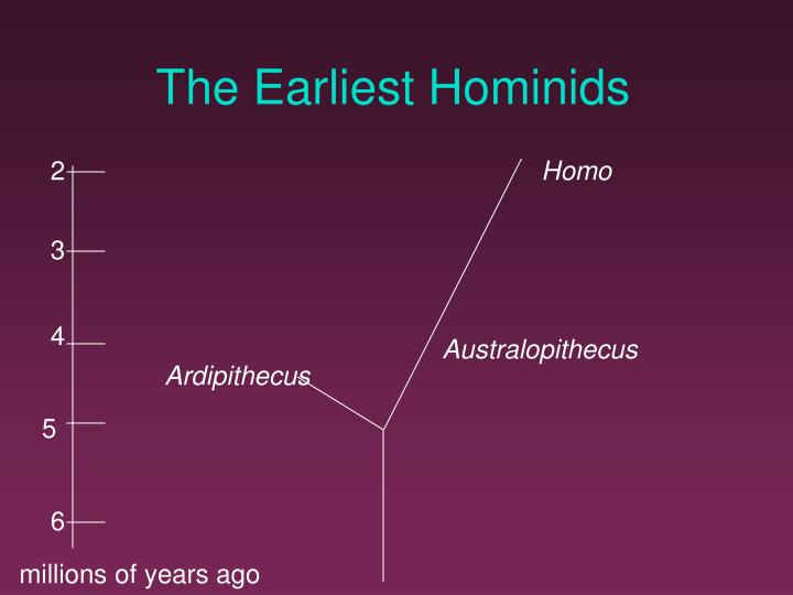 The Earliest Hominids