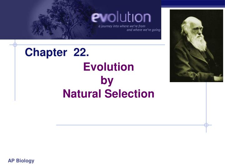 evolution and natural selection essay