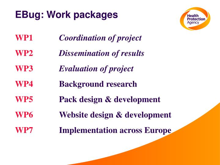 EBug: Work packages