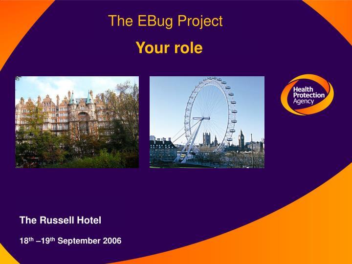The EBug Project