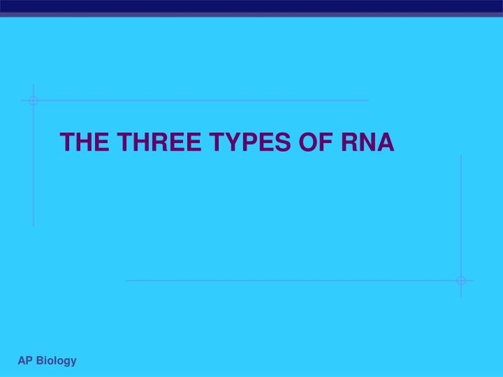 The three types of rna