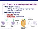 6 7 protein processing degradation