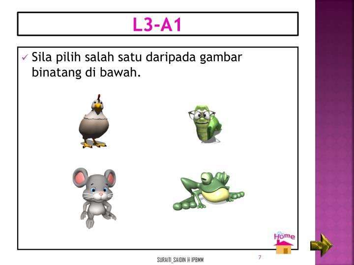 L3-A1