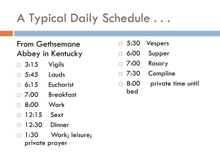 A Typical Daily Schedule . . .