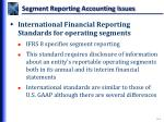 segment reporting accounting issues3